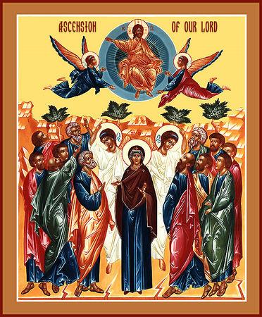 Homélie de l'Ascension (Année B)