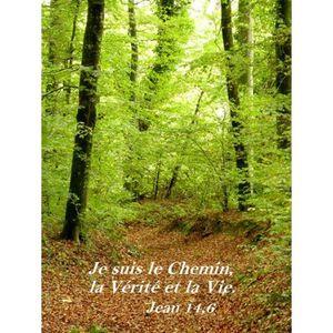 Méditations 5ème Semaine du Temps Pascal - Evangile du jour