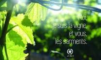 5ème dimanche de Pâques (B)